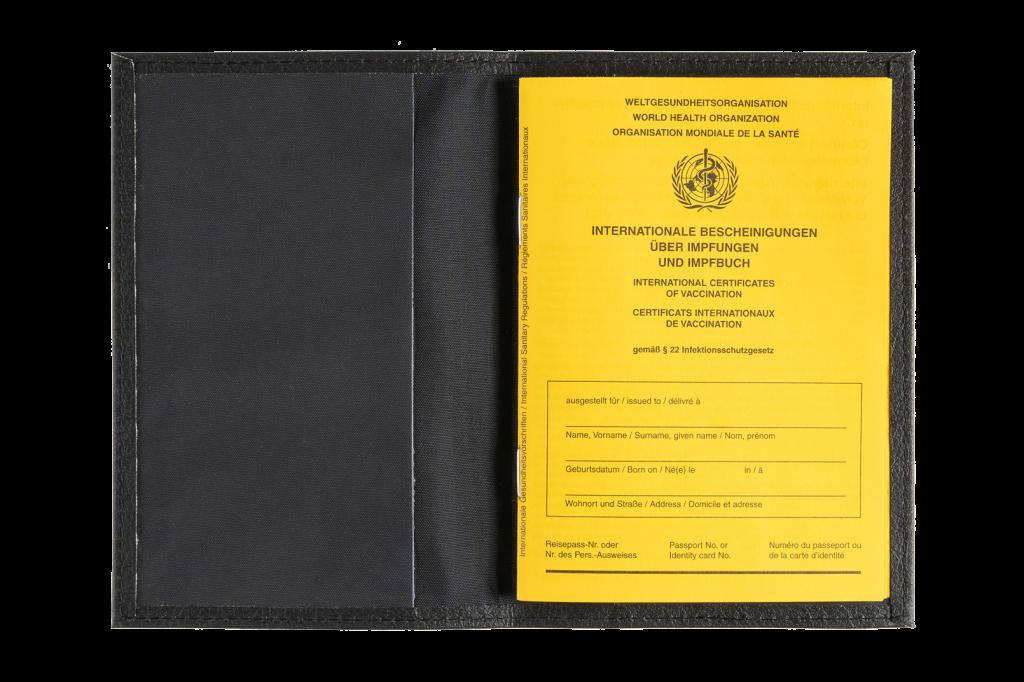 Schutzhülle für Impfbuch - Apfel Lederimitat